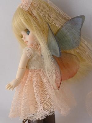カスタムプチブライス 蝶の羽