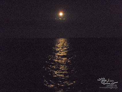 グレートバリアリーフで月見!