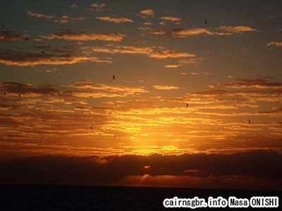 グレートバリアリーフで夕日