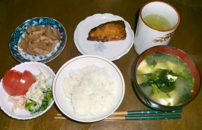 4月13日(水):晩ご飯〜480キロカロリー