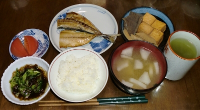 4月20日(水):晩ご飯〜485キロカロリー