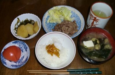 4月21日(木):晩ご飯〜599キロカロリー