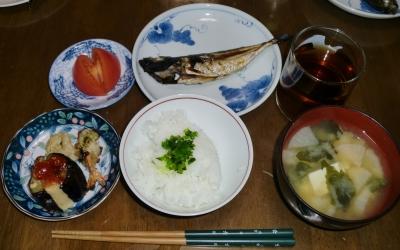 毎日、低カロリーな晩ご飯を!(5.14〜5.20)
