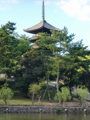 猿沢の池から興福寺を見たところ