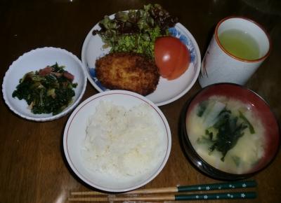 毎日、低カロリーな晩ご飯を!(12.31〜1.6)