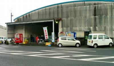 枕崎の濃いたっぷり満喫ツアー〜楽しい思い出を後にして!