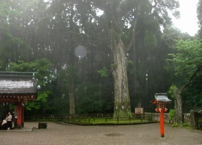 雨の中を霧島神宮へお参りへ