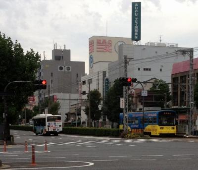 地元が地方祭なのに私は大阪の堺へだんじりを見に