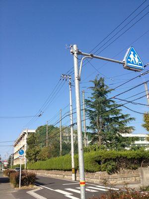 ママチャリに乗って私の母校がある新田高校近くまで走って行きました