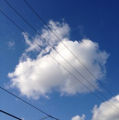 今朝起きて青空を見ると、こんな感じでした(^o^)