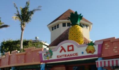 2日目の最初の目的地のパイナップルパークへ