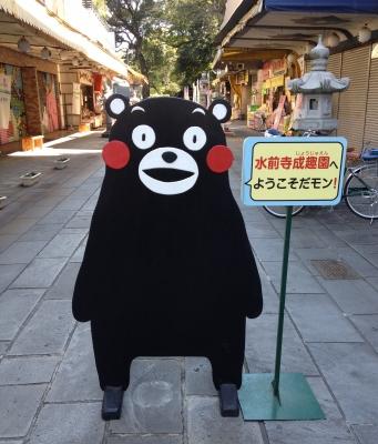 熊本での最終目的地の水前寺公園へ行きました