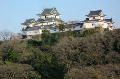 結婚記念日の和歌山旅行も楽しい思い出作りが出来ました