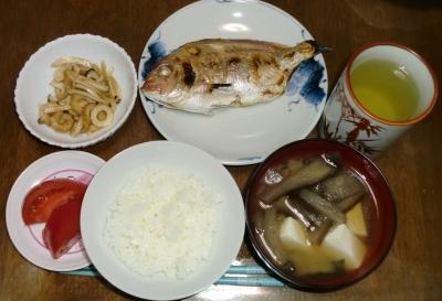 毎日、低カロリーな晩ご飯を!(5.11〜5.17)