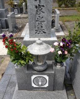 今日は月命日なのでお墓参りへ行きました