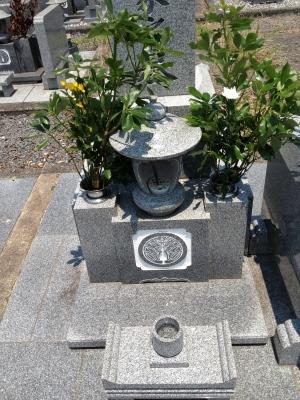 皮膚科の帰りにお墓参りに行きました