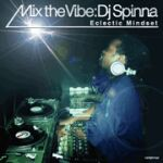 DJ Spinna-Mix The Vibe