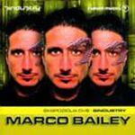 Marco Bailey-Ekspozicija Dve:Sindustry