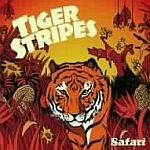 Tiger Stripes-Safari