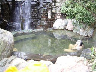 茂美の湯3