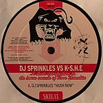 DJ Sprinkles Vs K-S.H.E - A Short Introduction To The House Sounds Of Terre Thaemlitz