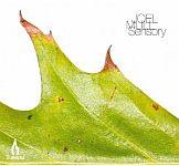 Joel Mull - Sensory