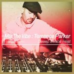 Terrence Parker - Mix the Vibe : Deeep Detroit Heat