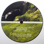 Asian Psilocybe Foundation - Water Vein EP
