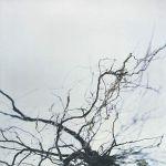 Yutaka Hirose - Nova + 4 (Extended Version)