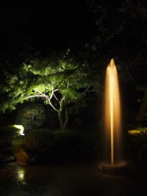 兼六園 夜間ライトアップ