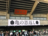 武道館で開催された亀の恩返し