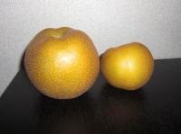 超巨大な梨