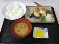 かま塩焼き定食