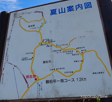 yamagatazao13.jpg