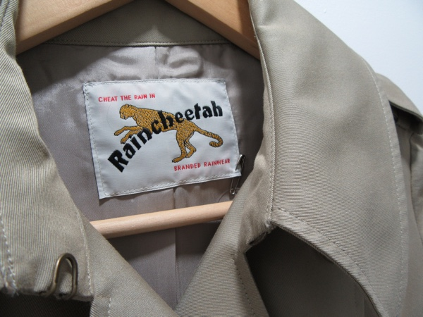 Raincheetah 4.jpg