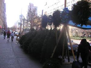 クリスマスツリー 路上