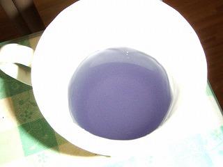 ゲータレード 紫 味