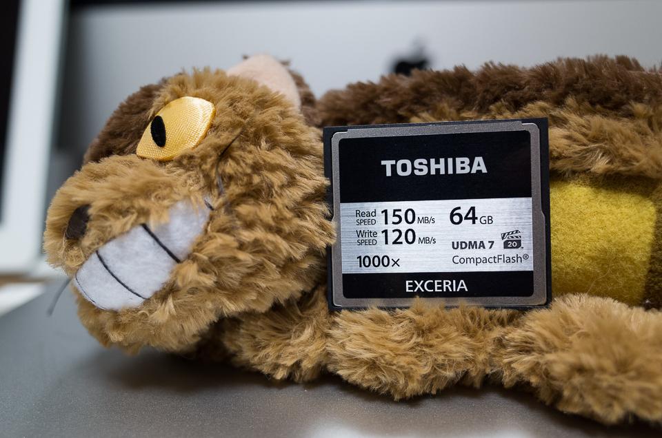 TOSHIBA EXCERIA CF-EZ064