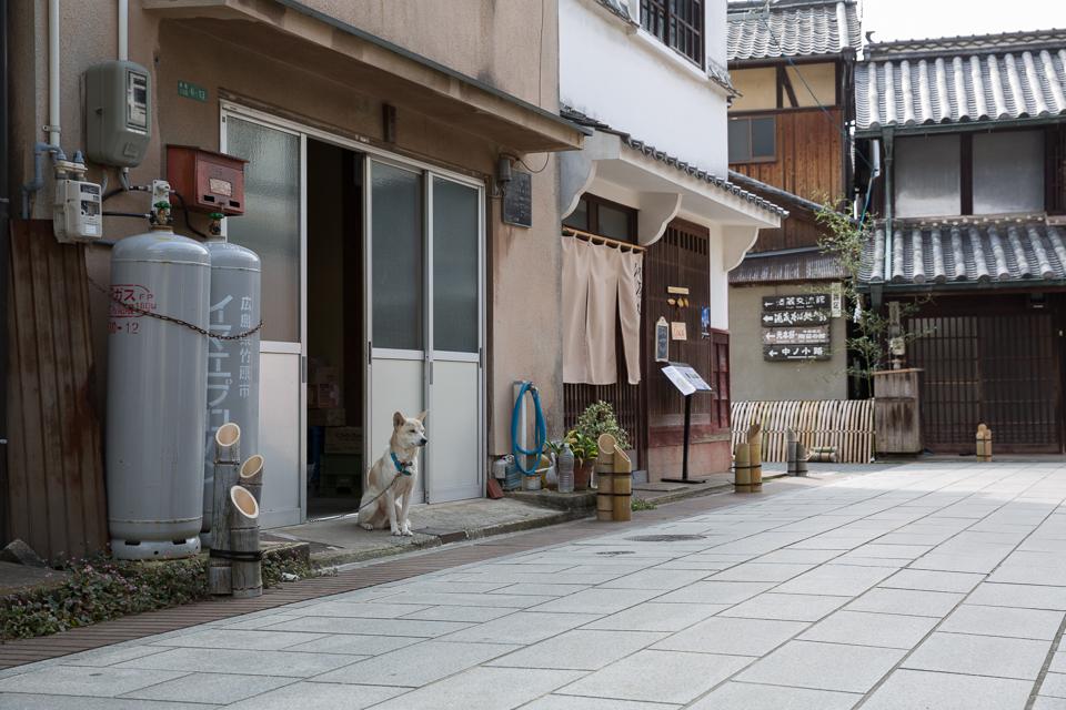 竹原の街並み13