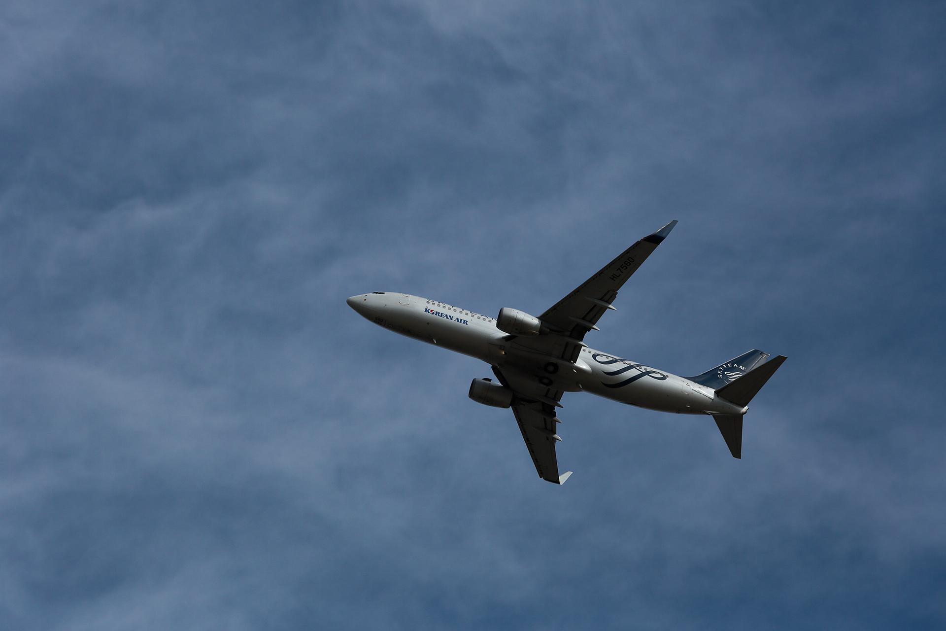 さくらの山公園飛行機10