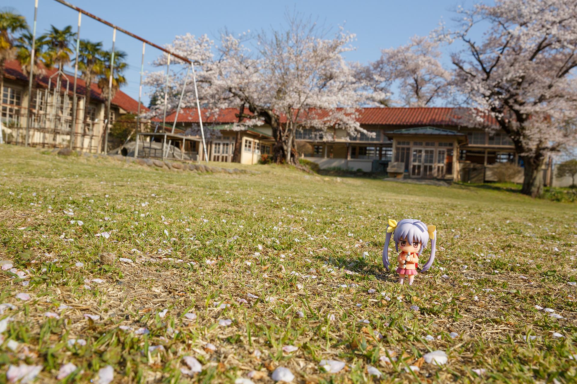 下里分校の桜2017