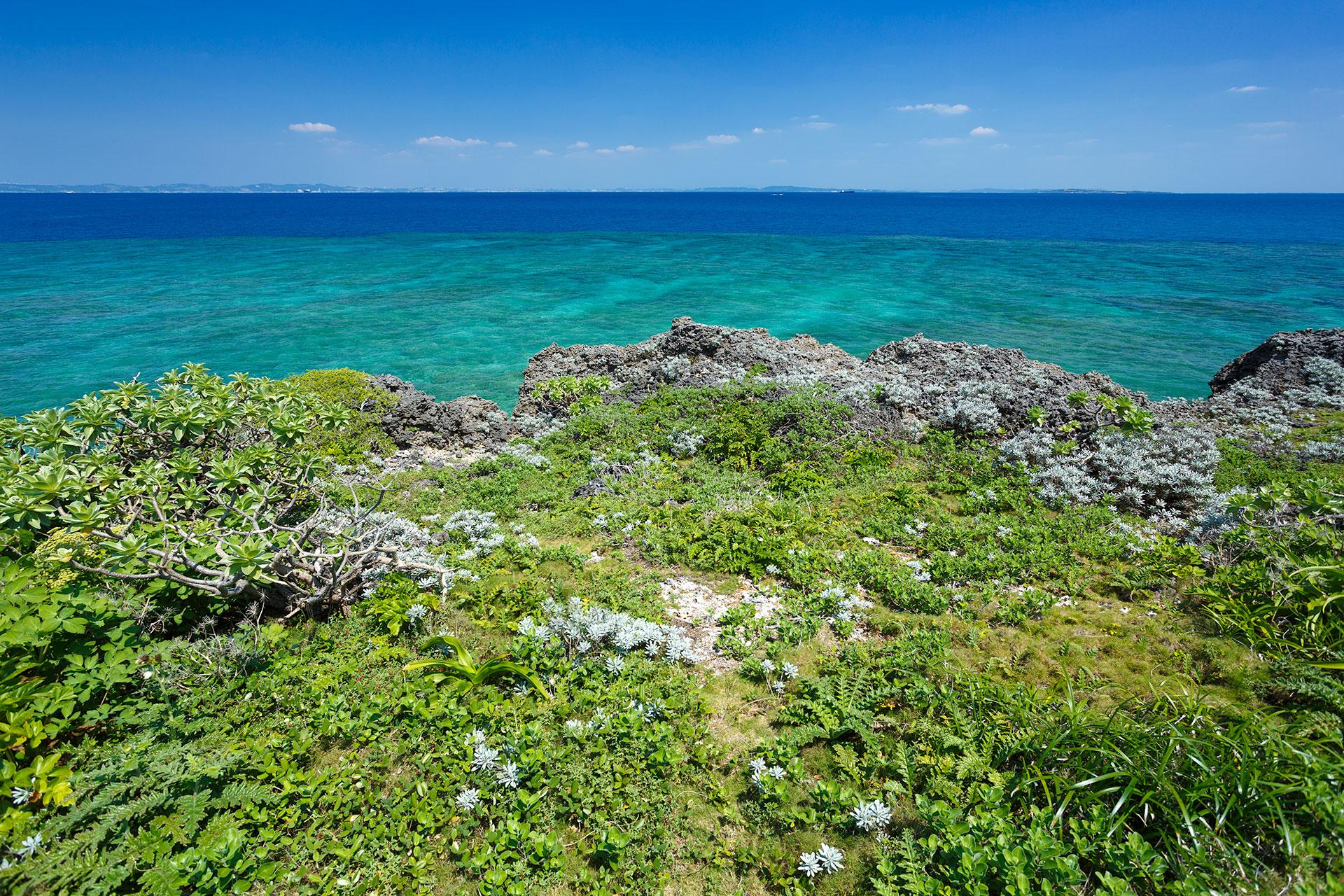 沖縄久高島の景色