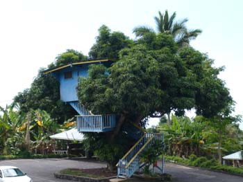 hawaii5-5