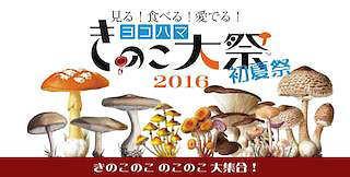 きのこ祭 2016 ヨコハマ