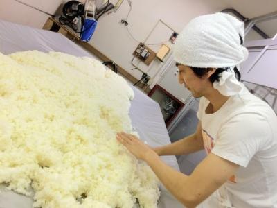 Kの、麹米づくりにも参加。2016年11月