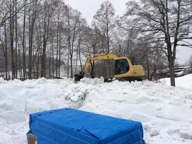 鮎 雪中貯蔵酒