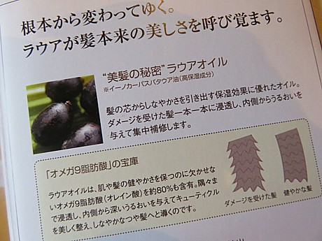 yukio0630 022.JPG