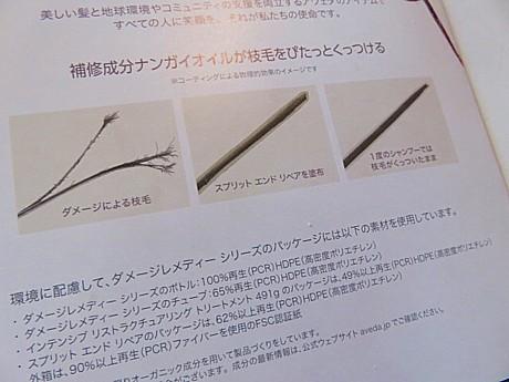 yukio1024 006.JPG