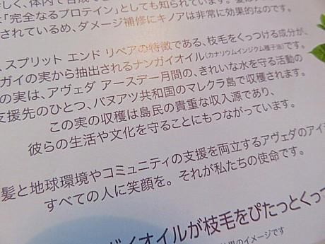 yukio1024 007.JPG