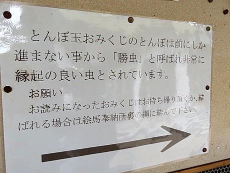 yukio0529 008.JPG